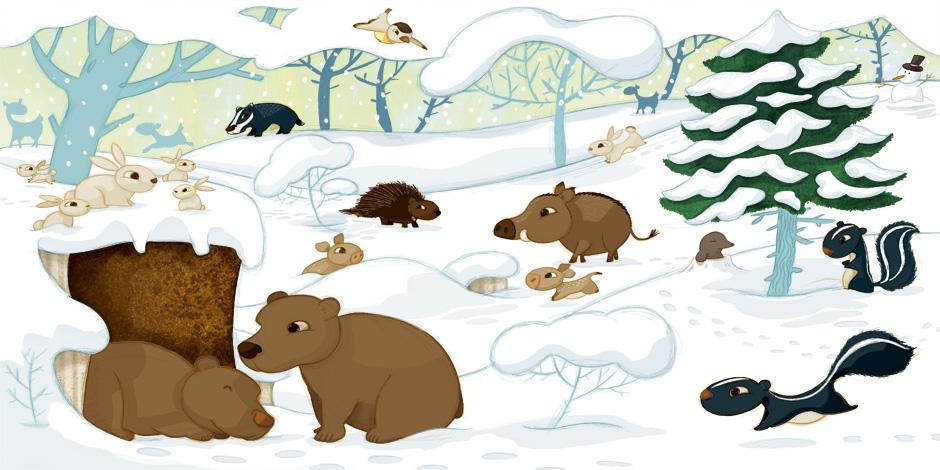 olivier huette illustrateur auzou la foret hiver