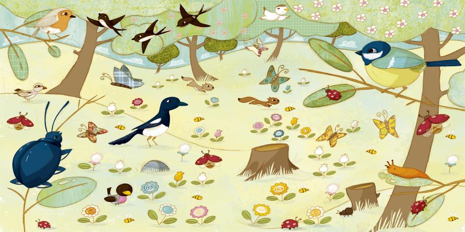 olivier huette éditions Auzou forêt au printemps