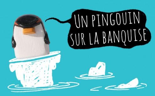 un pingouin sur la banquise